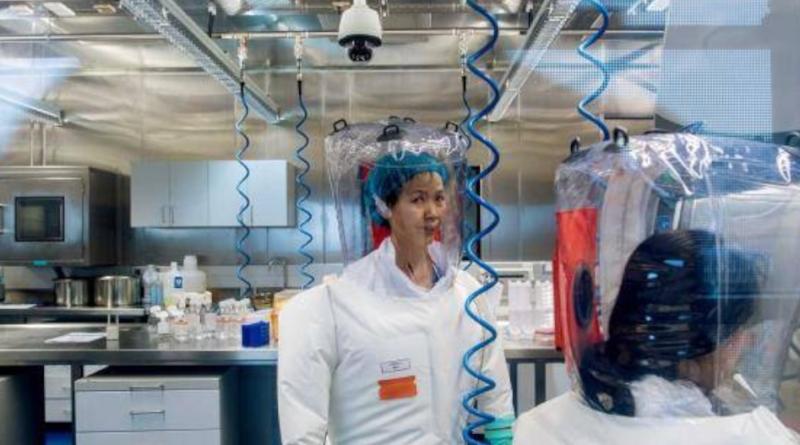 Shi Zhengli jest zatrudniona w laboratorium w Wuhan