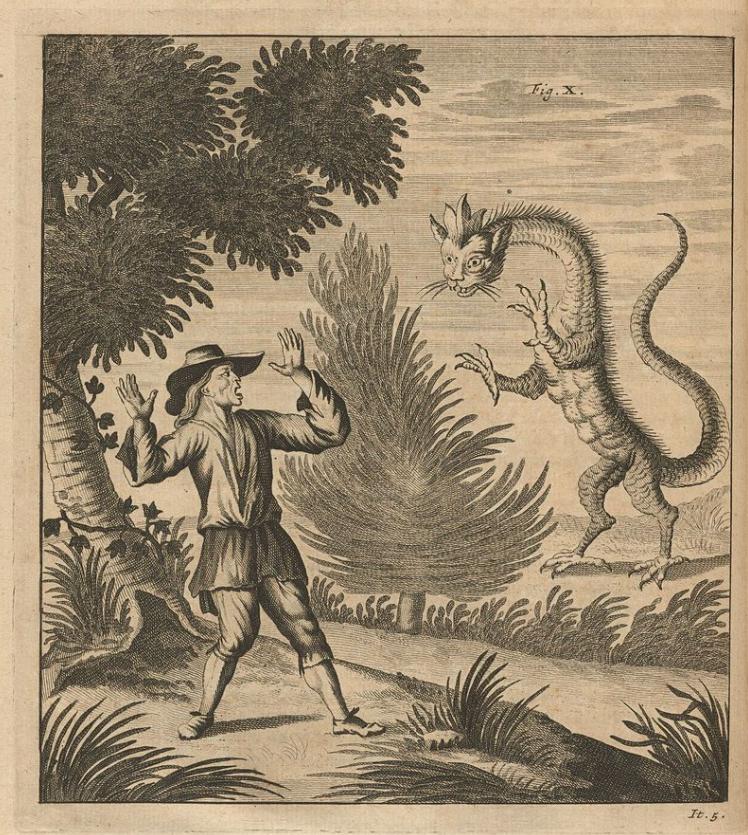 Tatzelwurm - górski smok, wielki robak? Kryptozoologia, legenda czy nauka?