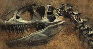 """Szczątki dinozaurów na Księżycu? Naukowy twierdzą, że dinozaury po """"wielkiej kolizji"""" mogły trafić w przestrzeń kosmiczną"""