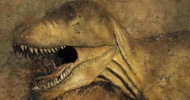 Jak wyginęły dinozaury? Naukowcy mają nową hipotezę skąd nadleciała kometa