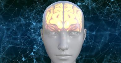 Wolna wola to tylko chemia i neurony? Fizycy wyjaśniają jak człowiek podejmuje decyzje