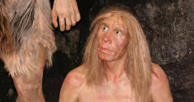 Neandertalczycy wyginęli przez przebiegunowanie Ziemi – nowe badania naukowców, jak zmieniała się pole magnetyczne Ziemi
