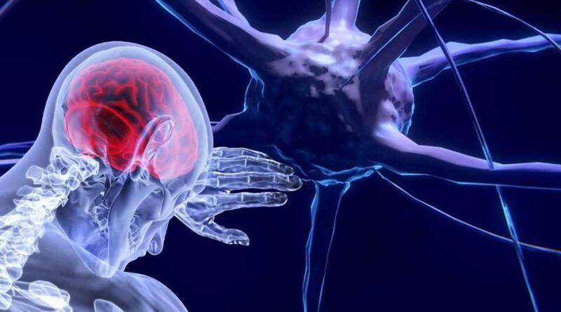 """Mózgowe """"komórki zombie"""". Naukowcy odkryli co dzieje się w mózgu po śmierci"""
