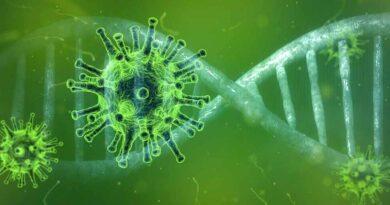 Doustny lek na COVID-19 od firmy Pfizer - rozpoczęły się testy kliniczne